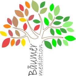 Logo Baumer mediation